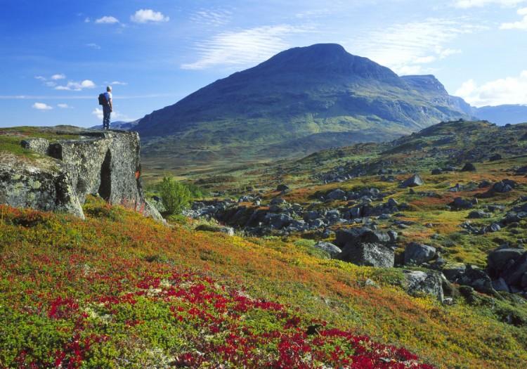 Красивый север Швеции фото