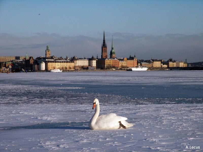 Зима в Стокгольме, Швеция фото